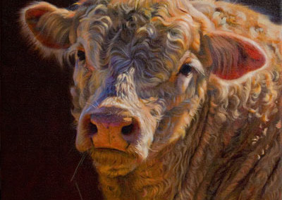 West Texas Charolais by Teresa Elliott