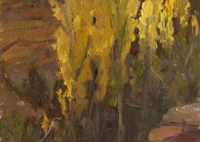 Canyon Poplars by Jan Mapes
