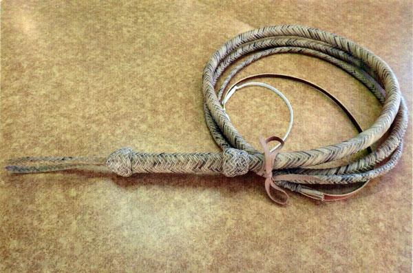 Bull Whip by Krist King