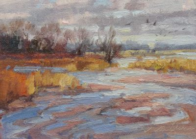 Platte River Shallows by V….Vaughan