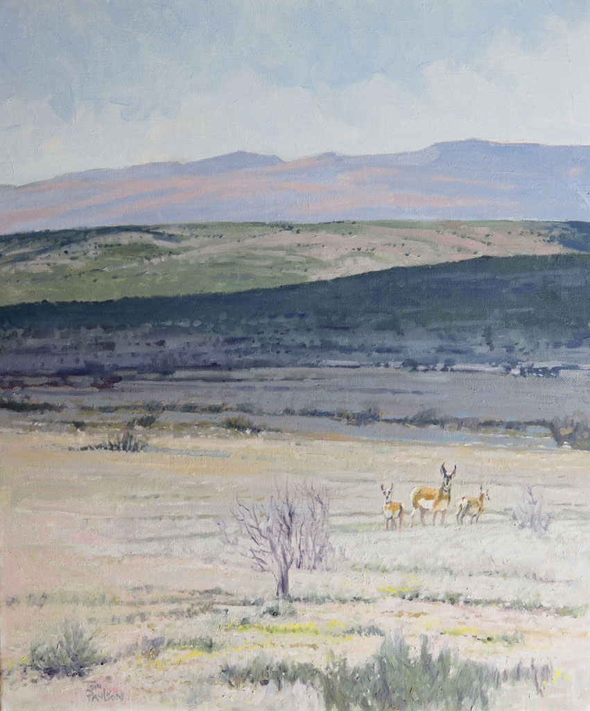 Somewhere Near Marfa by Tom Paulson