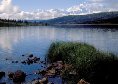 "Denali, ""The Great One,"" Tallest Peak in North America (20,310 feet), Alaska Range"