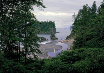 Pacific Ocean, Olympic Coast, Hoh Temperate Rainforest, Washington