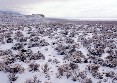 Salt Lake Playa, Sagebrush Desert, Great Basin, Nevada