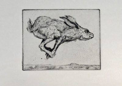 Jackrabbit by Phil Epp – SOLD