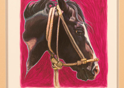 SOLD Untitled, horse head study by K.W. Whitley