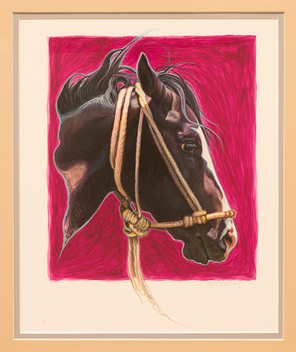 Untitled, horse head study by K.W. Whitley