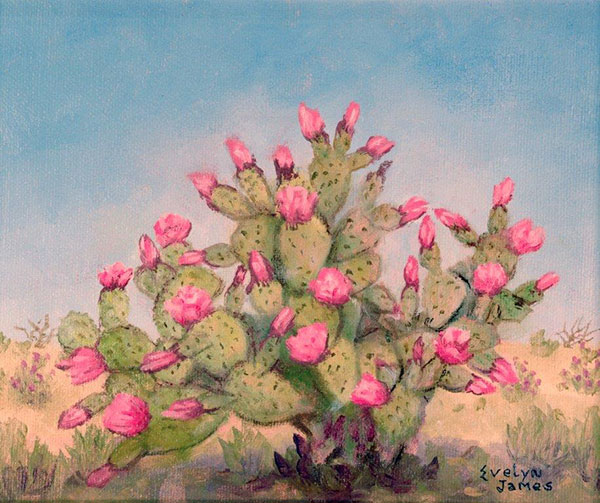 Spiny Explosion in Pink by Evelyn James