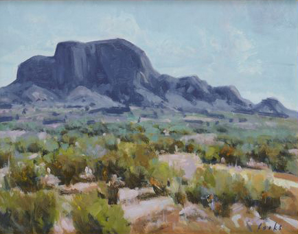 Summer Chisos by David Forks