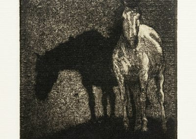Horses at Night by Phil Epp