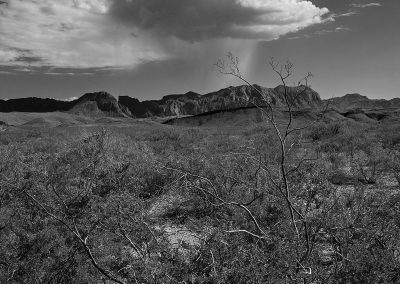 Rain on the Chisos