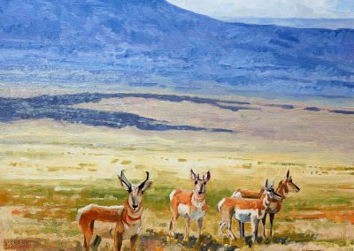 West Texas Pronghorns by Tom Paulson – SOLD