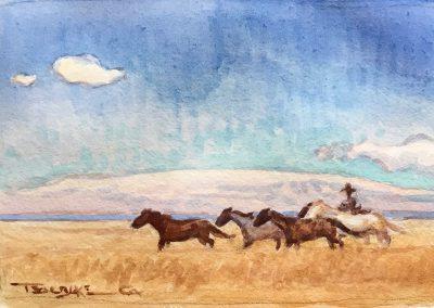 Running Horses by Teal Blake