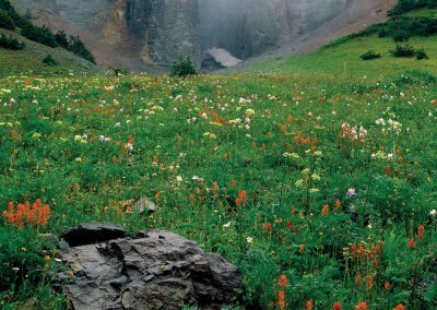 Pinnacles, Fog, Wildflowers, Mount Sneffels, San Juan Mountains, Colorado