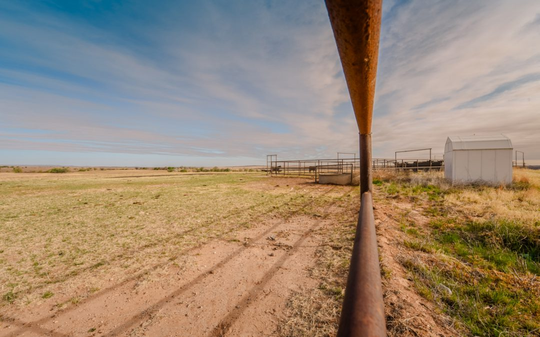 Fenced In, Quitaque, Texas by Susan Edgley