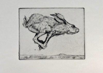 Jackrabbit by Phil Epp – SOLD