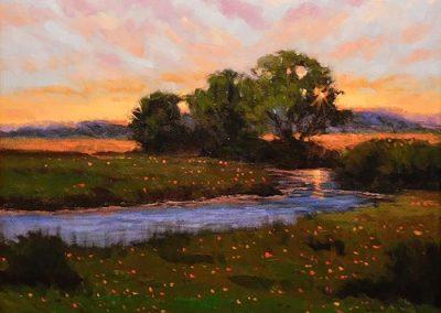 West Texas Sunset by Raul Ruiz