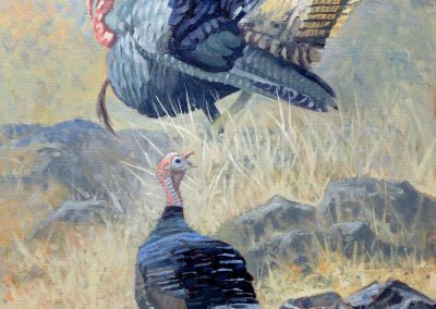 Turkey! Turkey! by Tom Paulson