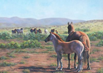 Waiting on the Herd by Shelly G. Rogers