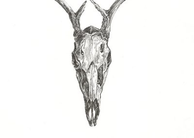 ART 13. Bone & Water by Kerri Menchaca – SOLD